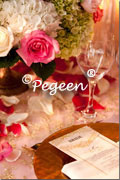 pink and ivory themed wedding